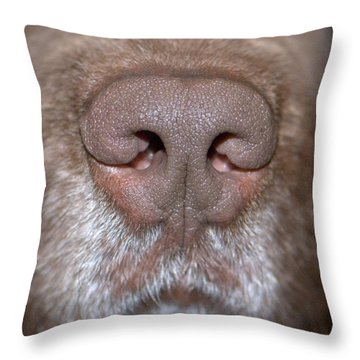 Throw Pillow featuring the photograph Nosey by Debbie Stahre