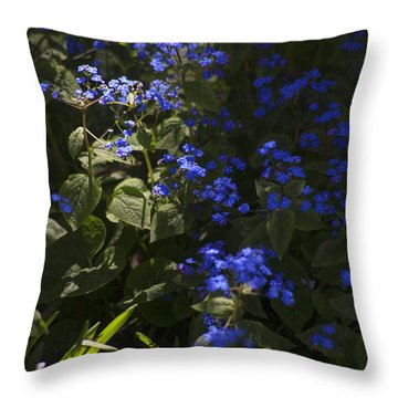Not A Chance Of Forgetting Throw Pillow