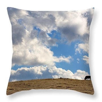 Not A Cow In The Sky Throw Pillow