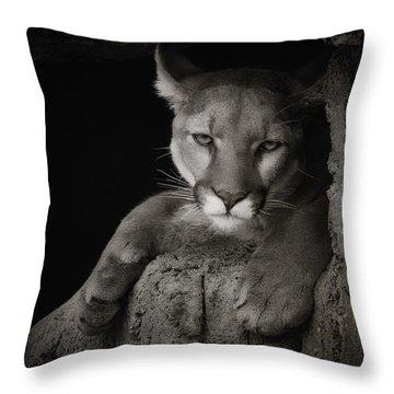 Not A Happy Cat Throw Pillow