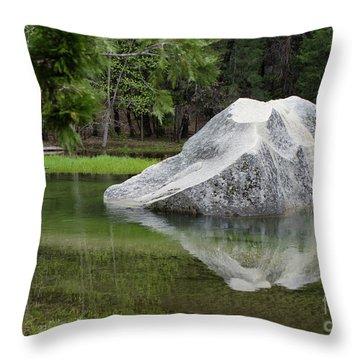 Not An Iceberg Throw Pillow by Debby Pueschel