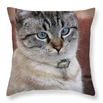 Not Impressed  Throw Pillow by Kim Henderson