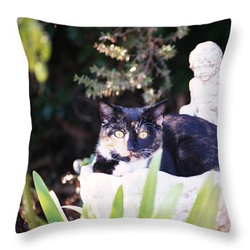 Not Just For The Birds Throw Pillow