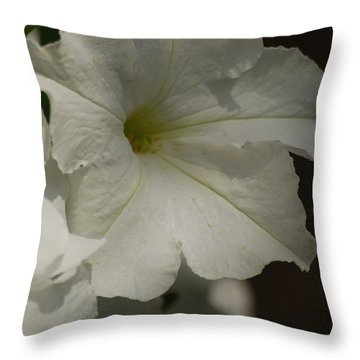 Throw Pillow featuring the photograph Not Perfect But Beautiful by Ramona Whiteaker