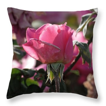Throw Pillow featuring the photograph Not Perfect But Special by Laurel Powell