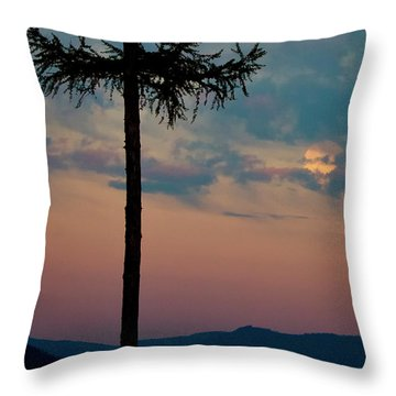 Throw Pillow featuring the photograph Not Quite Clearcut by Albert Seger
