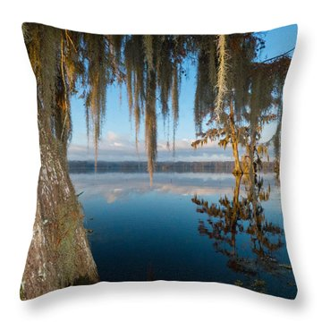 Looking For Lafayette Throw Pillow
