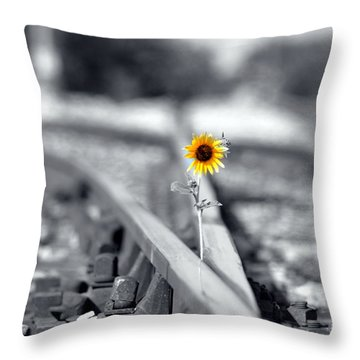 Not So Desolate Throw Pillow