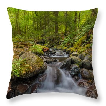 Not-so-dry Creek Throw Pillow by David Gn