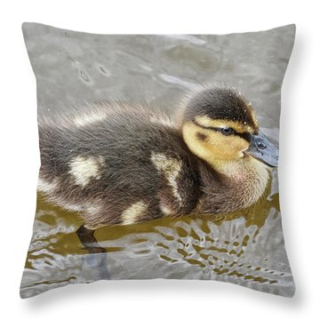 Not So Ugly Duckling Throw Pillow