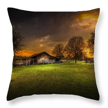 Not The Last Storm Throw Pillow