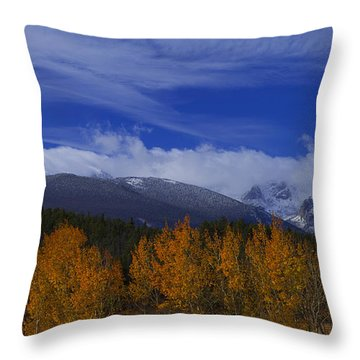 Not Yet Winter Throw Pillow
