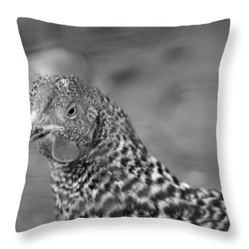 Not Your Chicken Dinner Throw Pillow