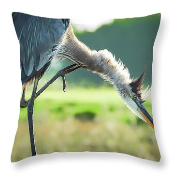 Nothing Like A Good Scratch Throw Pillow