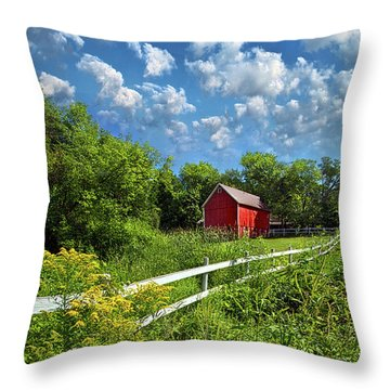 Noticing The Days Hurrying By Throw Pillow