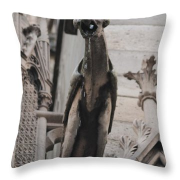 Rain Spouting Gargoyle. Throw Pillow by Christopher Kirby