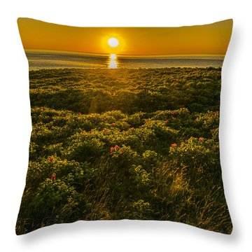Nova Scotia Dreaming Throw Pillow by Will Burlingham