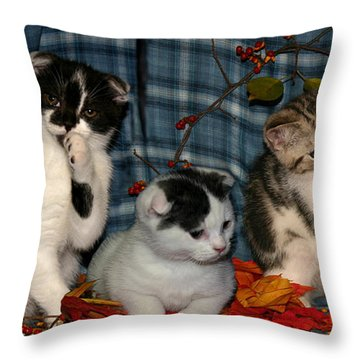 November 2004 Throw Pillow