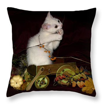 November 2005 Throw Pillow