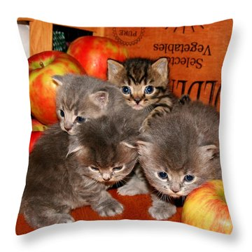 November 2007 Throw Pillow