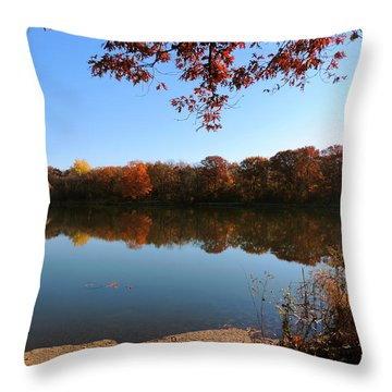 November Colors Throw Pillow