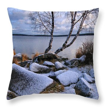November Day Throw Pillow