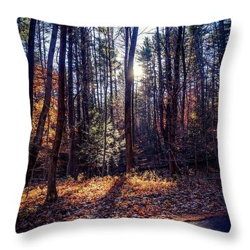 Throw Pillow featuring the photograph November Light by Kendall McKernon