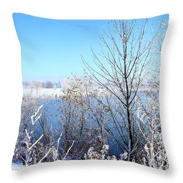 November Morning Surprise Throw Pillow by Scott Kingery