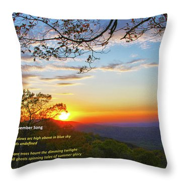 Throw Pillow featuring the photograph November Song by Mitch Cat