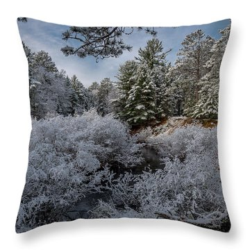 Novenber 1 On The Sucker River Throw Pillow