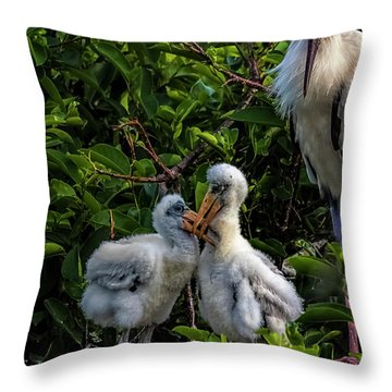 Now, Children... Throw Pillow by Cyndy Doty