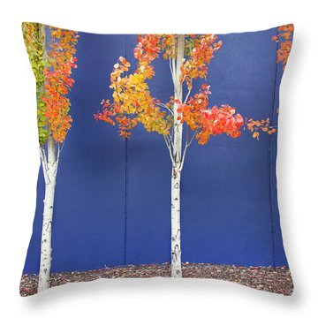 Throw Pillow featuring the photograph Now Showing by Theresa Tahara