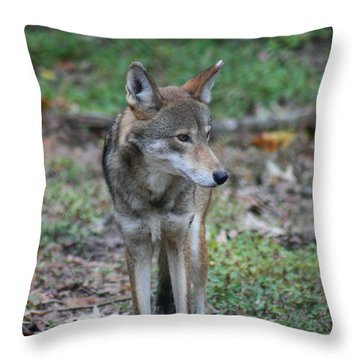 Now Those Are Some Legs Throw Pillow by David Dunham