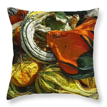 Nubby Squash Throw Pillow by Dee Flouton