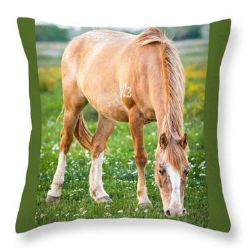 Throw Pillow featuring the photograph Number 403 by Melinda Ledsome