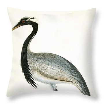 Numidian Crane Throw Pillow by English School