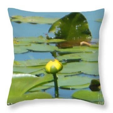 Nuphar Lutea Yellow Pond Throw Pillow