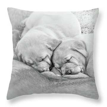 Throw Pillow featuring the photograph Nursing Labrador Retriever Puppies Black And White by Jennie Marie Schell
