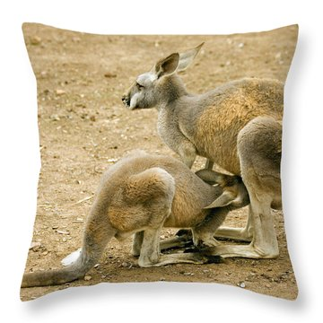 Nursing Time Throw Pillow by Mike  Dawson