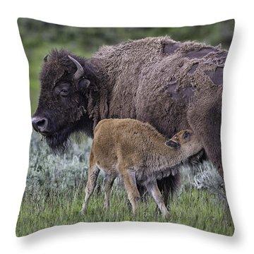 Nurtured Throw Pillow by Elizabeth Eldridge