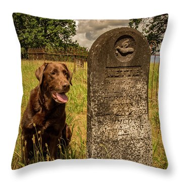 Throw Pillow featuring the photograph Nute In The Cemetery by Jean Noren