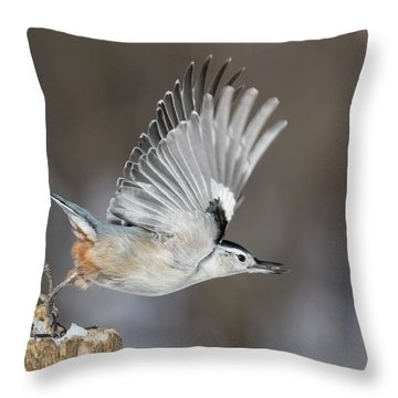Throw Pillow featuring the photograph Nuthatch In Action by Mircea Costina Photography