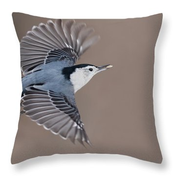 Throw Pillow featuring the photograph Nuthatch In Flight by Mircea Costina Photography