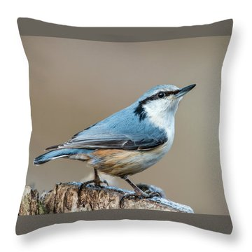 Nuthatch's Pose Throw Pillow by Torbjorn Swenelius