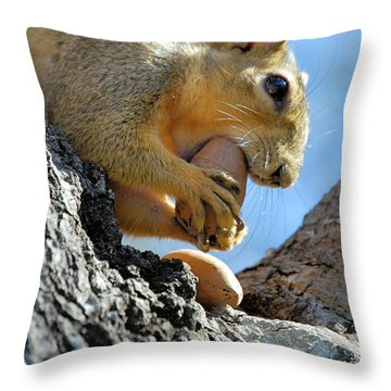 Throw Pillow featuring the photograph Nutjob by Debbie Karnes