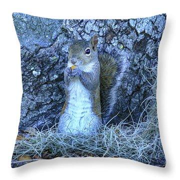 Throw Pillow featuring the photograph Nuts Anyone by Deborah Benoit