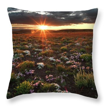 Nuttalls Linanthastrum Throw Pillow by Leland D Howard
