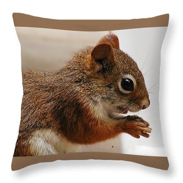 Nutty Guy Throw Pillow