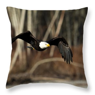 Nw Delight Throw Pillow