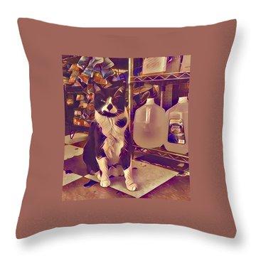 Nyc Bodega Cat Throw Pillow